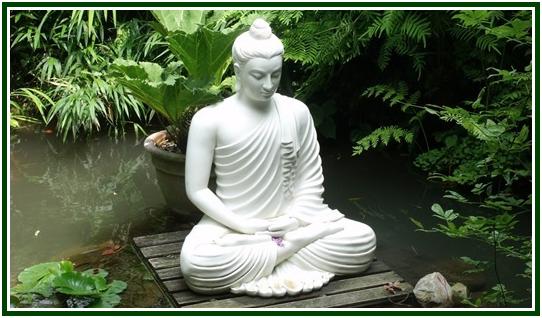 Meditação, Concentração, Vontade